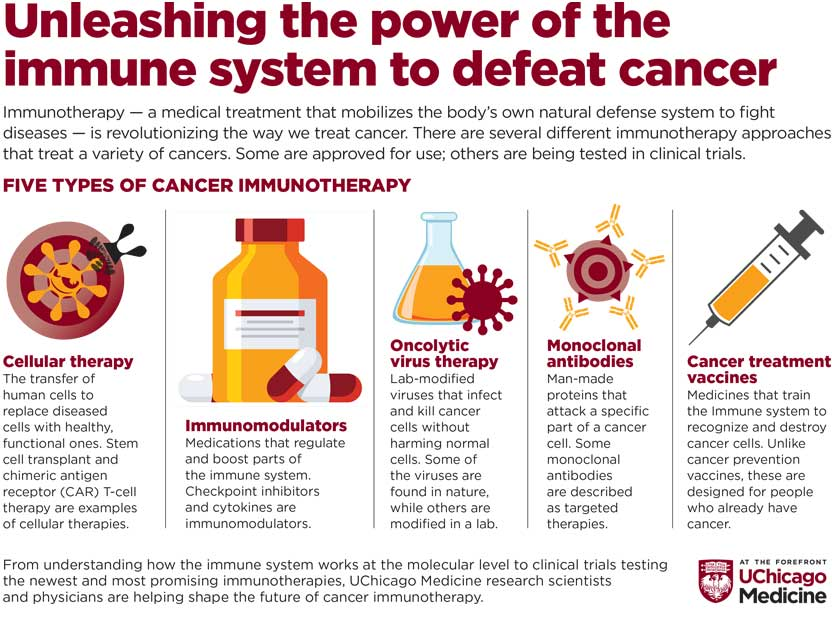 Five types of cancer immunotherapy infographic